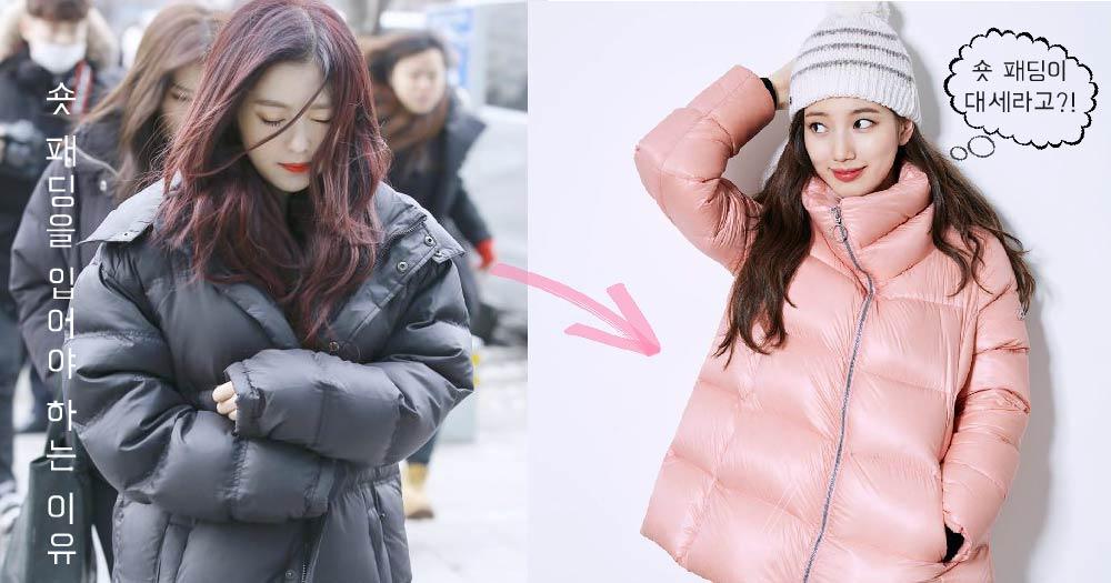 【드레스룸】 올겨울에 '숏 패딩'을 입어야 하는 이유가 있다고? 이제 김밥 말이 롱 패딩은 그만! '숏 패딩'의 비밀